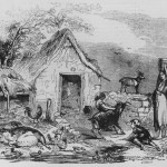Irish rural poverty early 1800s